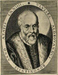 Aldrovandi (1522-1605) <br />Source : Ornithologiae (1599)