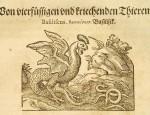 Basilisk from book Historia Naturalis by Gaius Plinius Secundus, that was translated to deutche language and published by Johann Heiden and ilustrated by Jost Amman in 1584. translation of Historia Naturalis middle-ages.<br />From Salzburg university library