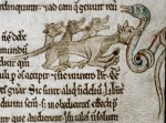 <em>Bodleian Library, MS. Douce 167, Folio 8r </em><br />A basilisk is attacked by a weasel, the only animal that can kill it.